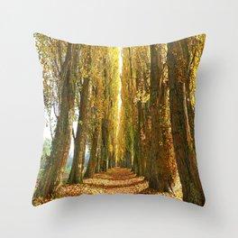 Poplar Avenue Throw Pillow