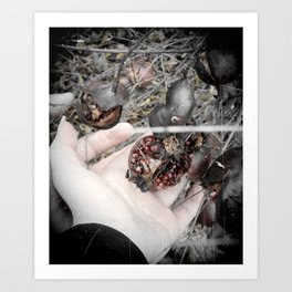 Wish for Eternal Winter Art Print
