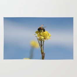 Honey bee on a wildflower Rug