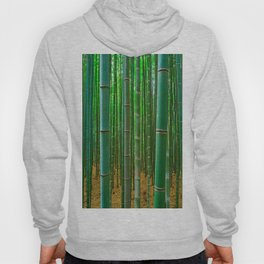 BAMBOO FOREST1 Hoody