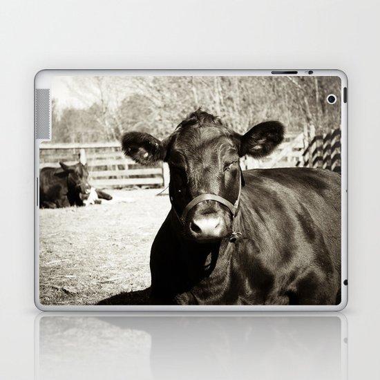 Black Cow Laptop & iPad Skin