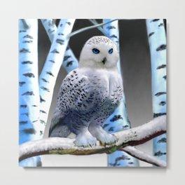 Blue-eyed Snow Owl Metal Print