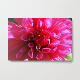Will Love You Forever Metal Print