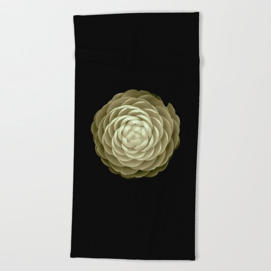 cream camelia on black background Beach Towel