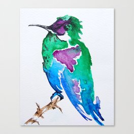 Colourful woodnymph Canvas Print