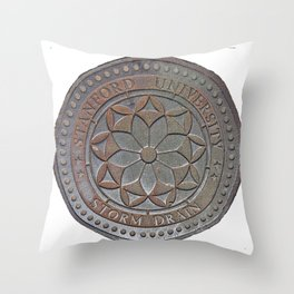 Storm Drain 1 Throw Pillow