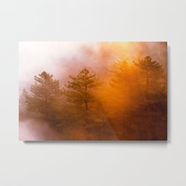 Golden Morning Glory Forest Metal Print