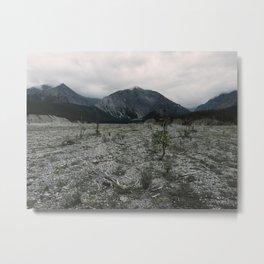 Muncho Lake Landslide, British Columbia, Canada Metal Print