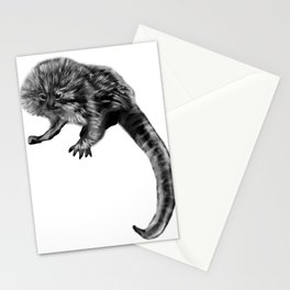 Pygmy Marmoset Stationery Cards