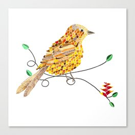 Bird of Costa Rica, yiguirro Canvas Print