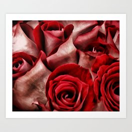 Velvet Roses Art Print