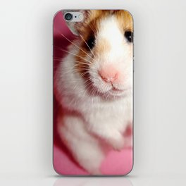 Pixi the Hamster: Love Edition iPhone Skin