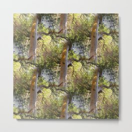 The day of the trees.... Metal Print