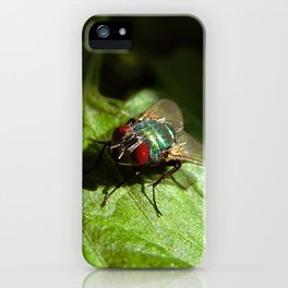But A Fly iPhone Case