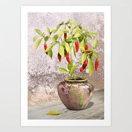 Thai Peppers Art Print