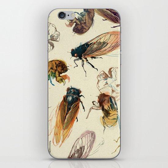 summer cicadas iPhone & iPod Skin