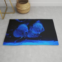 Aquarium fishes in blue light. Rug