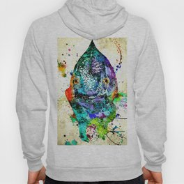 Chameleon Front View Grunge Hoody