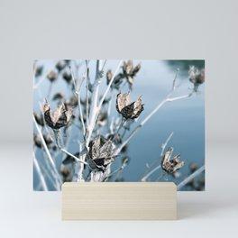 Winter Seed Pods Mini Art Print