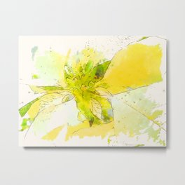 Pale Yellow Poinsettia 1 Serene Metal Print
