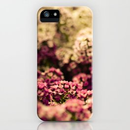 Serendipitous Moment iPhone Case