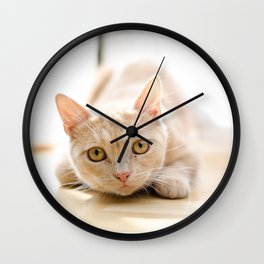The pouncing kitty Wall Clock