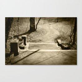pathways. Canvas Print
