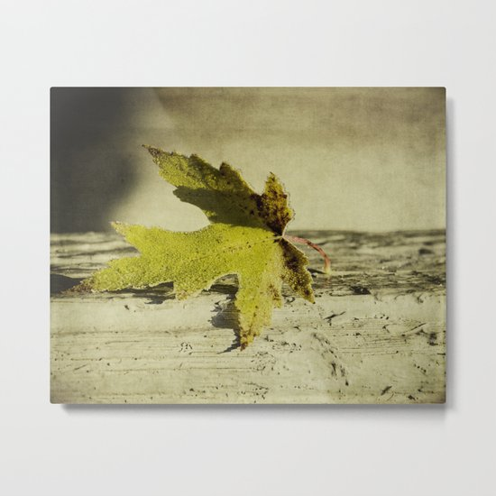 one leaf Metal Print
