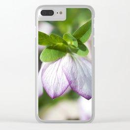 Lenten Rose Clear iPhone Case