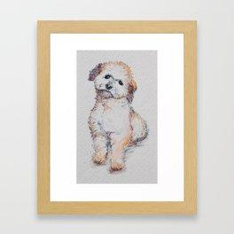 Reggie of lancaster Framed Art Print
