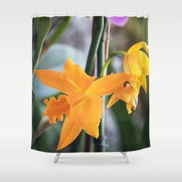 Longwood Gardens Orchid Extravaganza 71 Shower Curtain