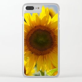 In the sun Clear iPhone Case