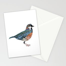Typographic Sparrow Stationery Cards