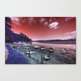 Fal Experimental Canvas Print