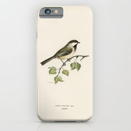 Greylag Goose (Anser anser) illustrated by the von Wright brothers iPhone Case