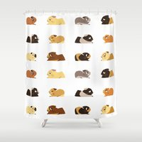 guinea pig Shower Curtains featuring Guinea pigs by stephasocks