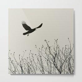 Aloft - Graphic Birds Series, Plain - Modern Home Decor Metal Print