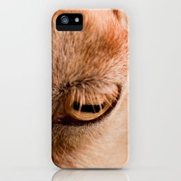 Window to a goat's soul  iPhone Case