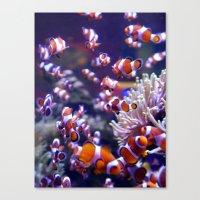 nemo Canvas Prints featuring Nemo by Arielle Walker
