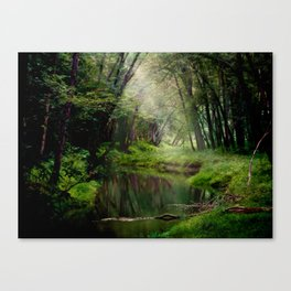 Over the River and Through the Woods Canvas Print