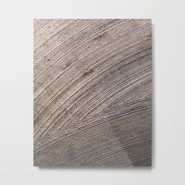 Swept Metal Print