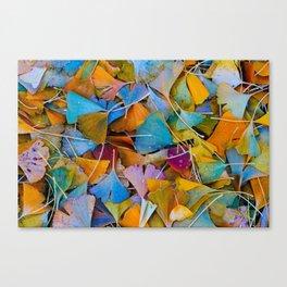 Fallen Ginkgo Leaves Canvas Print