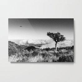 Ufo IV Metal Print