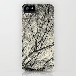 Incandescence bw ambro iPhone Case