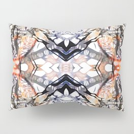 CatFishEye Quad Pillow Sham