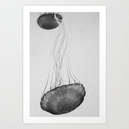 Jellyfish Basics no. 2 Art Print