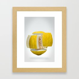 Flying Casaba Melon Framed Art Print