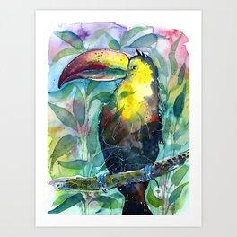 TOUCAN, watercolor illustration (nature) Art Print