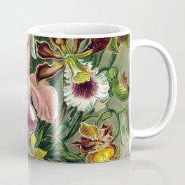 Vintage 1865 Botanical Orchids Coffee Mug