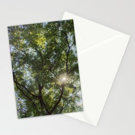 Inside the tree Stationery Cards